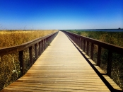 This boardwalk was unrelenting in the heat