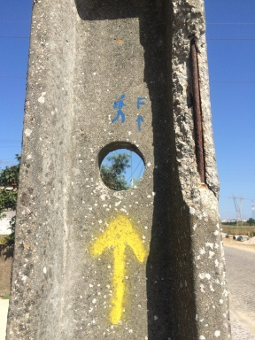 Camino Portuguese-065