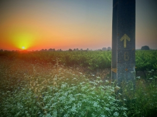 Sunrise on the camino