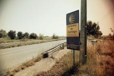 Camino Portuguese-104