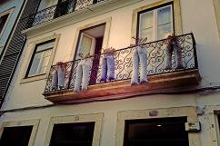 Jean pot plant holders!