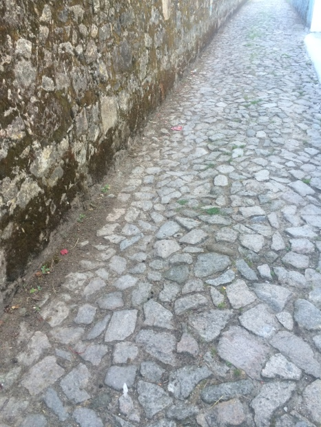 The not so foot friendly Portuguese cobble stones