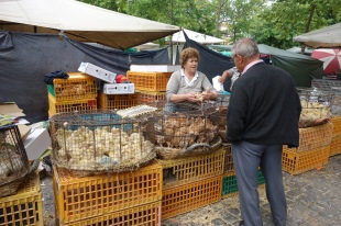 Barcelos Thursday market