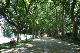 The camino entrance to Ponte de Lima