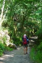 Camino Portuguese-584