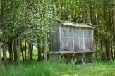A 'horreo' granary