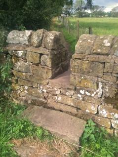 Hadrian's Wall-044