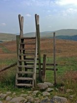 A deer fence and larger than life stile!