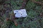 Thames Path-106