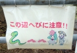 'Kono hen hebi ni chu-ii' - warning there are snakes in this area. (hiragana and kanji)