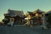 Temple 17, Idoji