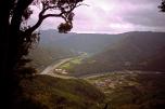 The path to Temple 20, Kakurinji