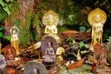 Shikoku 88 Temple Pilgrimage-0262