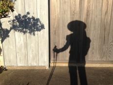 My henro shadow