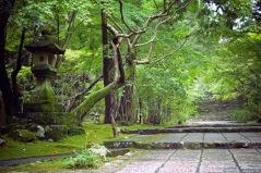 Temple 31, Chikurinji