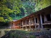 Temple 43, Meisekiji