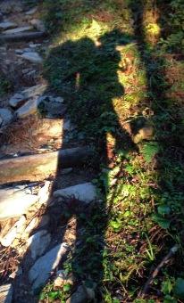 Henro shadow