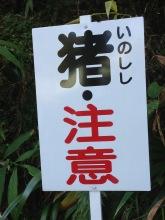 'Inoshishi chu-ii' - wild boar warning. (kanji)