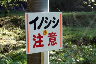 'Inoshishi chu-ii' - wild boar warning. (katakana and kanji)