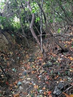 The path to Temple 65, Sankakuji