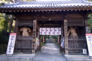 Temple 68, Jinnein