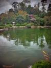 A pond at Temple 78, Goshoji