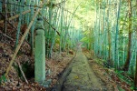 The choishimichi path to Koyasan