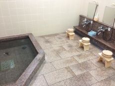 On Koyasan (mainland) at Muryokoin Temple, ¥5000, communal bath