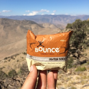 Bounce protein ball