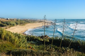 Gorgeous Portuguese Atlantic Coast