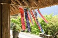 Koi-no-bori carp blowing in the wind for Children's day
