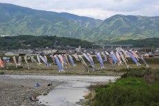 Koi-no-bori carps flying over the Kino River