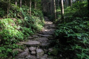Magose toge pass stone path, Iseji route