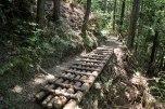 On the way up Tsuzurato toge pass, Iseji route