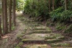Kamakura era stone path, Hadasu no michi toge, Iseji route
