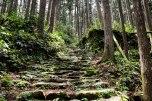 Stone path along the Ogumotori-goe