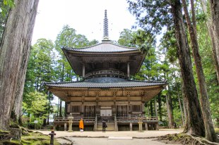 Wooden pagoda in the Danjo Garan complex, Koyasan