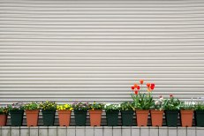 Flowers and shutters along the main street in Koyasan