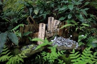 Ogumotori-goe trail