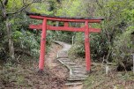 Torii gate along the Nyoninmichi path, Koyasan
