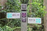 Matsumoto toge pass, Iseji route