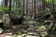 A stone path on Mt Yaki-yama on the Iseji route