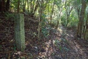 Short forest path leading to Nagai zaka slope, Ohechi route