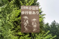 Signs along the road alerting drivers of hikers walking the Kohechi trail