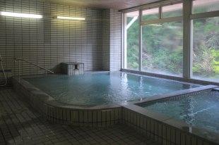 The Onsen at Nosegawa Onsen Hotel, Omata