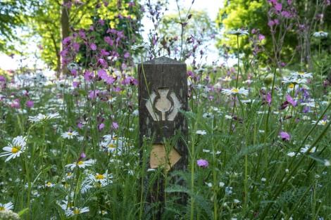 Scotland's Great Trails official thimble way mark