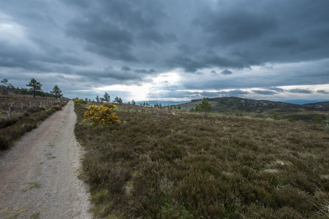 Crossing moorland on the way to Inverness