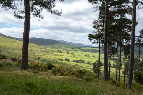 Ever-changing views of the Speyside Way