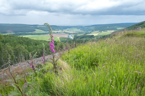 Views of the River Spey from the trail around Ben Aigan
