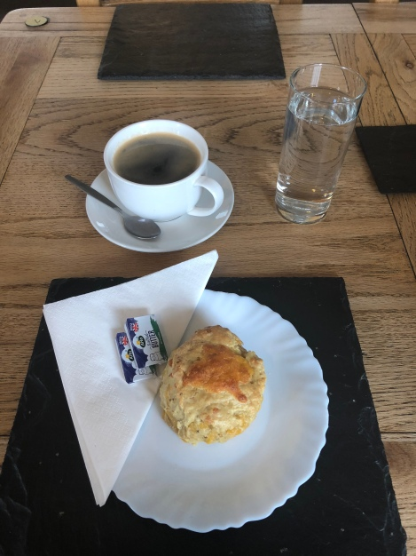 A cheese scone at the Scottish Dolphin Centre Cafe